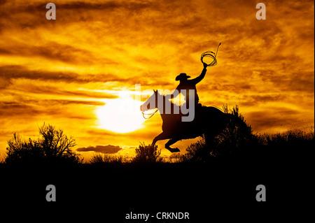 Cowboy Riding Horse at Sunset, Sombreo Ranch, Colorado - Stock Photo