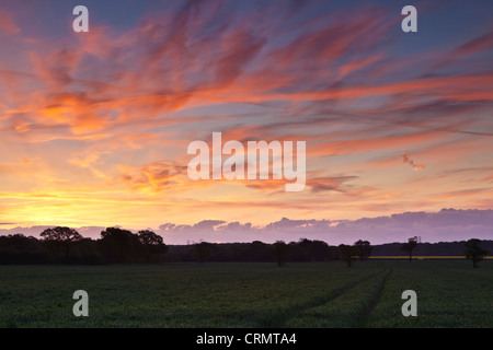 Rising Sun in EssexCreates Many Colours in Sky with High Cloud and Old Contrails - Stock Photo