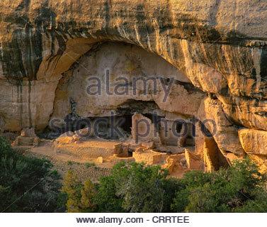 Oak Tree House. Anasazi culture. Occupied 12th/13th century. Mesa Verde National Park, Colorado. - Stock Photo