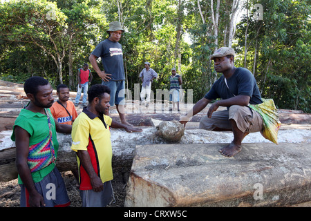 Lumberjacks in a clearing of a log area, province of Madang, Papua Neuguinea - Stock Photo