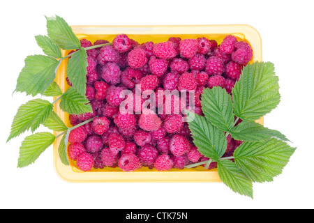 Ripe red raspberries with leaves . Fruits are grown without fertilizers, environmentally friendly product. Studio - Stock Photo