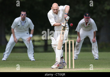 A Batsman in action during a village cricket match in the English Countyside. Picture by James Boardman. - Stock Photo