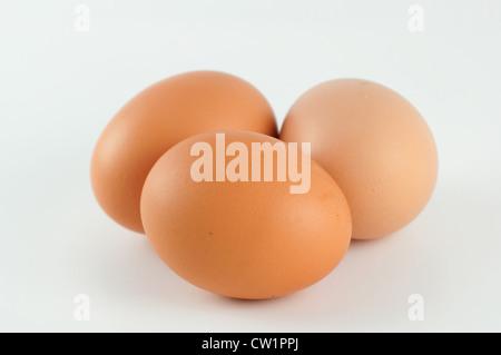 three eggs on a white background - Stock Photo