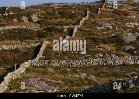 Stone walls snake across the landscape setting boundarys, Carraroe, Conamara, County Galway, Ireland - Stock Photo