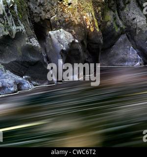 Fairy Glen, Betws-y-Coed, Gwynedd, Wales - Stock Photo