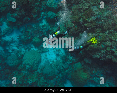 Two Scuba Divers on coral reef at Great Barrier Reef Australia viewed from above - Stock Photo