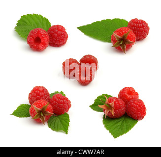 Set of Red Ripe Raspberry with Green Leaves Isolated on White Background in Studio - Stock Photo