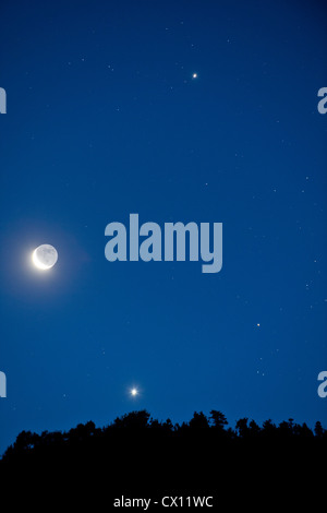 Moon and stars in the sky - Stock Photo