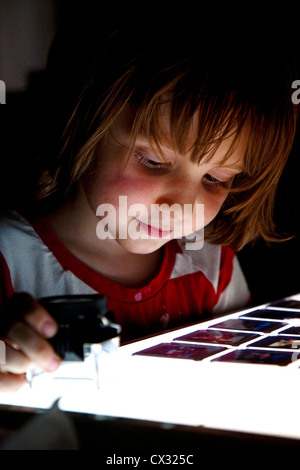 Young boy looking at 35mm slides on a light box - Stock Photo