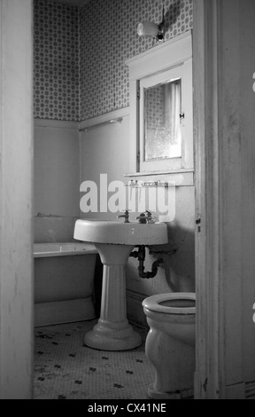 A house which has sat vacant for 20 years shows signs of neglect. - Stock Photo