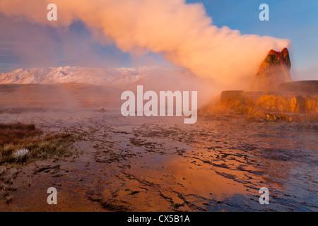 Fly Geyser in the Black Rock Desert near Gerlach, Nevada, USA - Stock Photo
