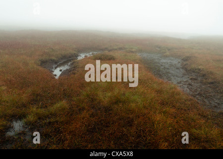 Bad weather and boggy moorland. Thick fog on a wet peat bog moor near Brown Knoll, Derbyshire, Peak District, England, - Stock Photo