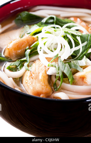 Udon Noodles - Stock Photo