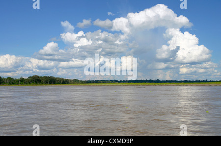 Amazon river margin native landscape - Stock Photo