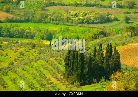 Views of the Tuscan countryside from San Casciano - Stock Photo