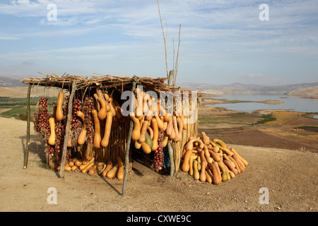 Butter nut squash and onions for sale on a roadside stall with a lake and the Rif Mountains in Morroco in the backgrond - Stock Photo