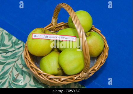English Golden Delicious apples in basket on display during Big Apple Day at Much Marcle Herefordshire England UK - Stock Photo