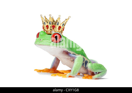 Frog wearing a crown - Stock Photo