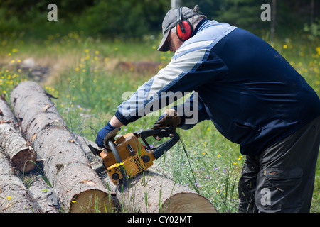 Pensioner cutting a spruce log with chainsaw , Finland - Stock Photo