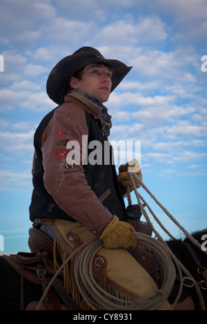 Cowboy gazing at a heard of horses from his horseback. Captured on ranch in northeastern Wyoming. - Stock Photo