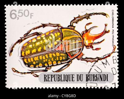 Postage stamp from Burundi depicting Chelorrhina Beetle (Chelorrhina polyphemus) - Stock Photo