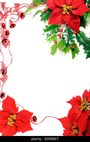 Christmas frame, poinsettia and holly decoration on a white background - Stock Photo