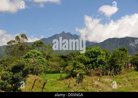 Volcano, Landscape, Volcan Baru, Panama, Central America, - Stock Photo