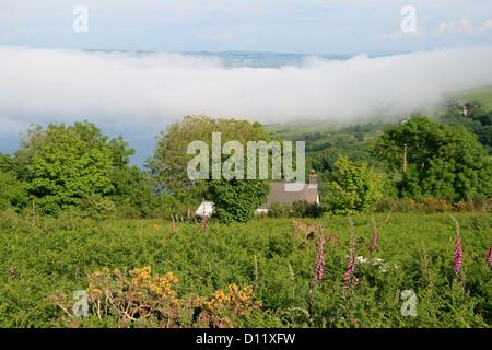 sea mist Teifi estuary St Dogmaeils Pembrokeshire Wales UK - Stock Photo