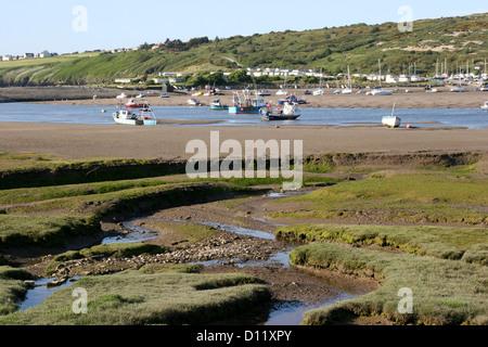Salt marsh and Teifi estuary Tidal creeks low tide St Dogmaeils Pembrokeshire Wales UK - Stock Photo