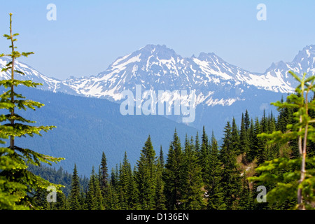 View of mountain peaks from Elk Thurston hike in Chilliwack BC,Canada - Stock Photo