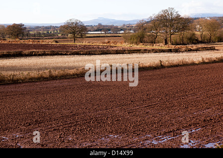 Bare winter fields and trees with waterlogged muddy ground, Hereford, UK - Stock Photo
