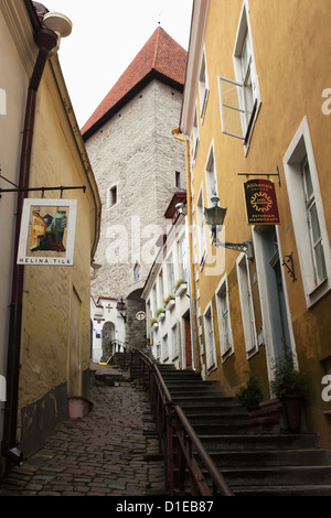 Passageway leading to Toompea, in the UNESCO World Heritage Site centre of Tallinn, Estonia, Europe - Stock Photo