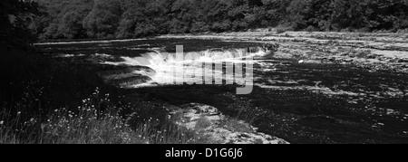 panoramic River Ure; Aysgarth Falls; Wensleydale; Yorkshire Dales National Park, North Yorkshire, England, United - Stock Photo