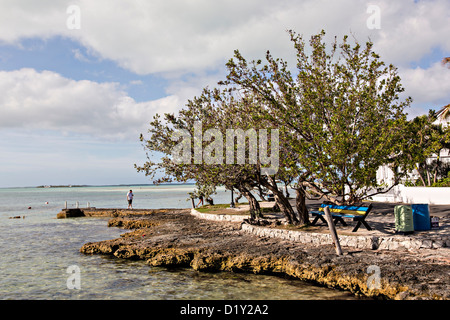 Waterfront along Bay Street in Dunmore Town, Harbour Island, The Bahamas - Stock Photo