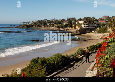 A coastal view of Laguna Beach California with vibrant red Aloe Vera flowering along the cliff tops of this popular - Stock Photo