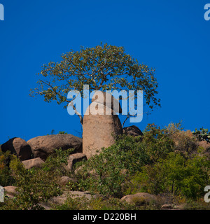 Phallic Rocks At The Valley Of Marvels, Babile, Ethiopia - Stock Photo