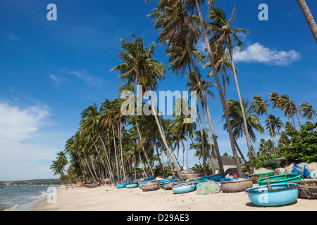 Vietnam, Mui Ne, Mui Ne Beach, Palm Trees and Fishing Coracles - Stock Photo