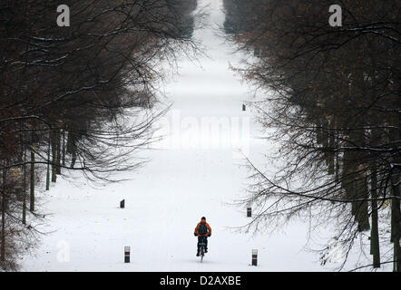 A cyclist on a bicycle rides through the snow covered Tiergarten park in Berlin, Germany, 14 January 2013. Photo: - Stock Photo