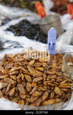 Deep fried insects at market, Phnom Penh, Cambodia, Indochina, Southeast Asia, Asia - Stock Photo
