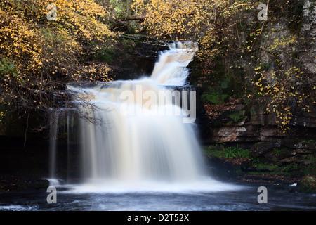 West Burton Waterfall in autumn, Wensleydale, North Yorkshire, England, United Kingdom, Europe - Stock Photo