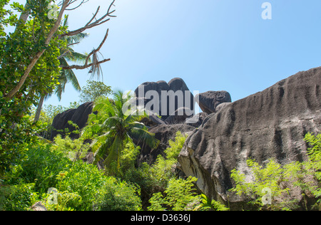 Mountain view  in La Digue island - Stock Photo