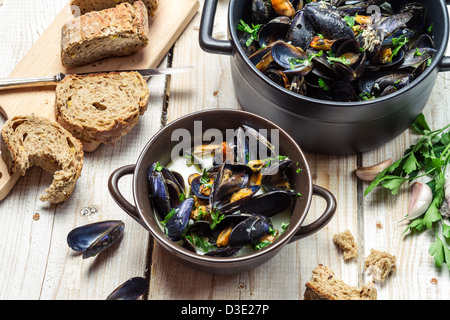 Fresh mussels served in a sunny day - Stock Photo