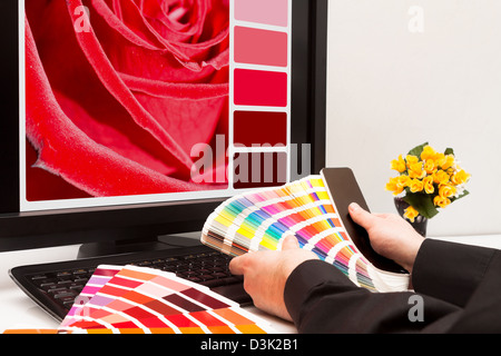 Graphic designer at work. Color samples. Red rose - Stock Photo