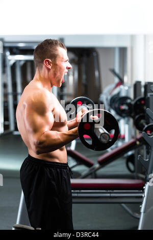 Strong man - bodybuilder with dumbbells in a gym, exercising with a barbell - Stock Photo