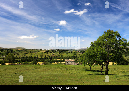 Summer view over Wensleydale, Yorkshire Dales National Park, England, United Kingdom - Stock Photo