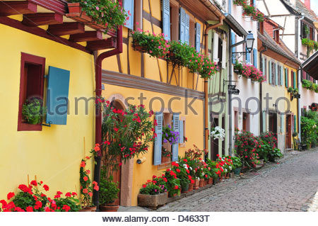 Floral Street and colourful façades, Eguisheim, Haut-Rhin, 68, Alsace, France - Stock Photo