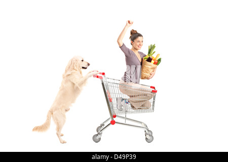White retriever dog pushing a woman in a shopping cart isolated on white background - Stock Photo