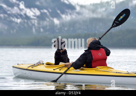 Woman sea kayaking with a dog in Glacier Bay National Park, Alaska. - Stock Photo