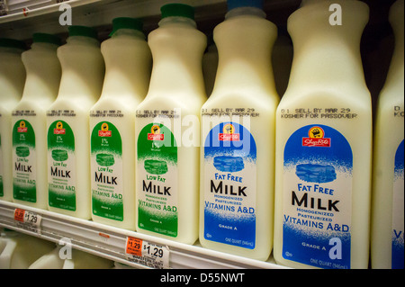 Containers of fat free and low fat milk in a supermarket refrigerator in New York - Stock Photo
