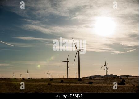 March 26, 2013 - Snowflake, Arizona, U.S - An Iberdrola, S.A. windfarm known as Dry Lake II seen just outside Snowflake, - Stock Photo
